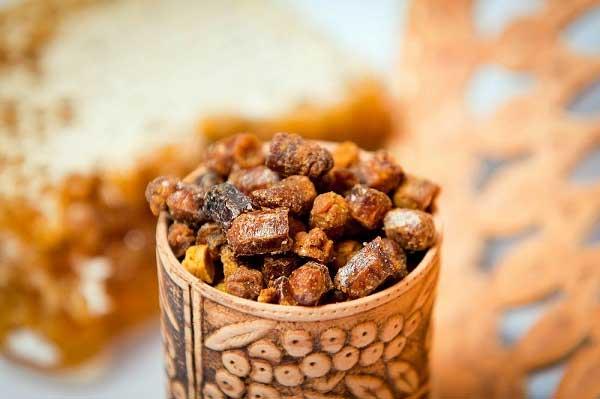 Пчелиная перга: полезные и лечебные свойства, состав