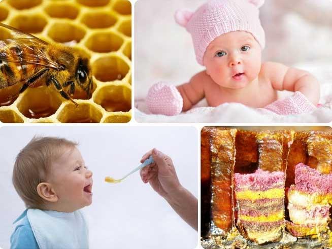 Свойства перги пчелиной для мужчин
