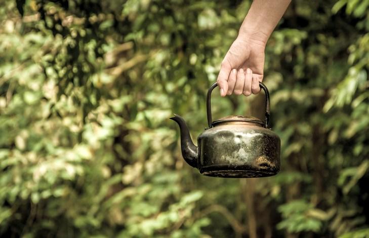 Ферментация чая что это такое?